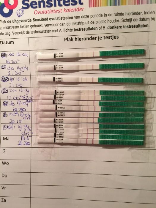 Goede Testresultaten Met De Ovulatietesten Ovulatietest En